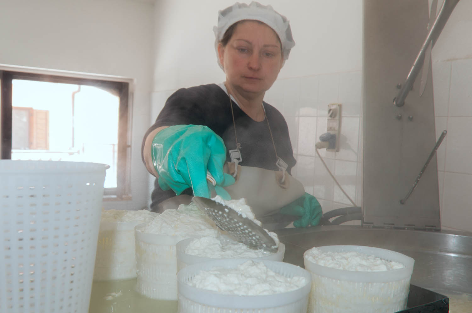 Ricotta cheese processing