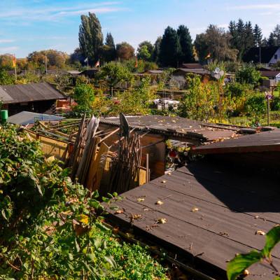 Kassel urban gardens